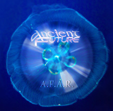 Best of A.F.A.R. So Far CD Cover
